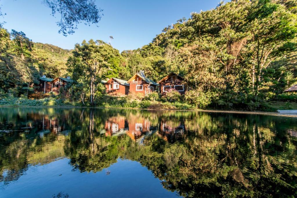 Sueños Del Bosque Lodge Providencia Precios Actualizados 2019