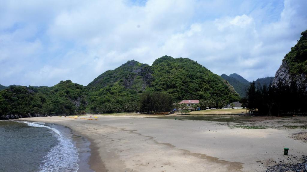 Image result for cat ba tung thu beach
