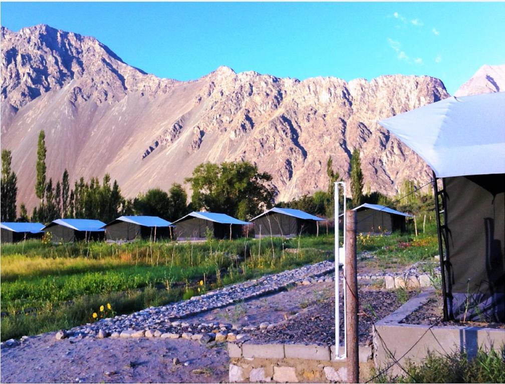 Campsite Tih Cold Desert Camp Hundar India Booking Com
