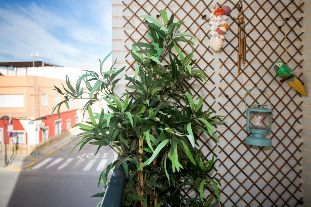 Apartment Turismo Y Relax Moncófar Spain Booking Com