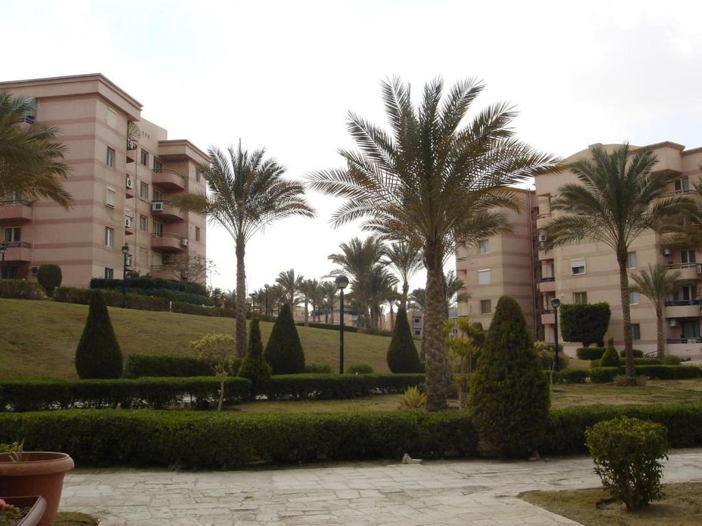 Apartment Rehab Cosy Appartment with Garden, Cairo, Egypt - Booking.com
