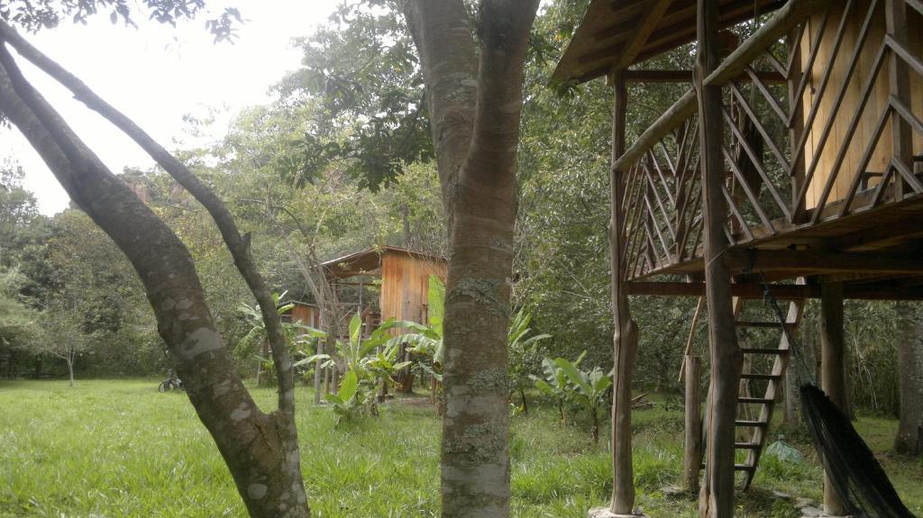 A garden outside Rumi Wilco Ecolodge & Nature Reserve