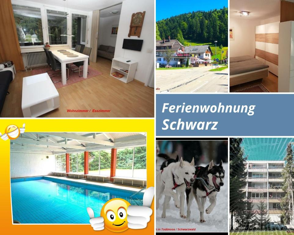 Apartment Ferienwohnung Schwarz Todtmoos Germany Booking Com
