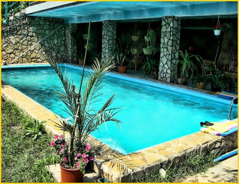 The swimming pool at or near Attila's House