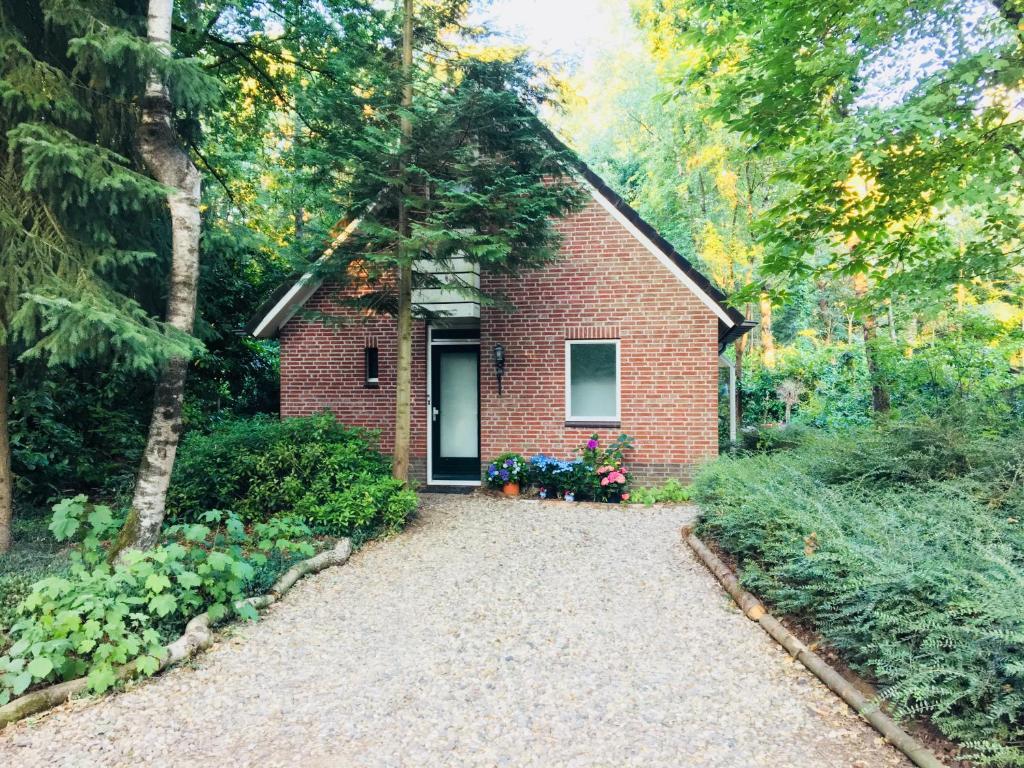 Villa Vosseveen (boshuisje), Zelhem – Prezzi aggiornati per ...