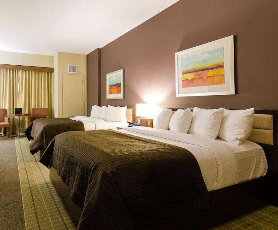Casino new brunswick moncton hotel alan jackson winstar casino november 16