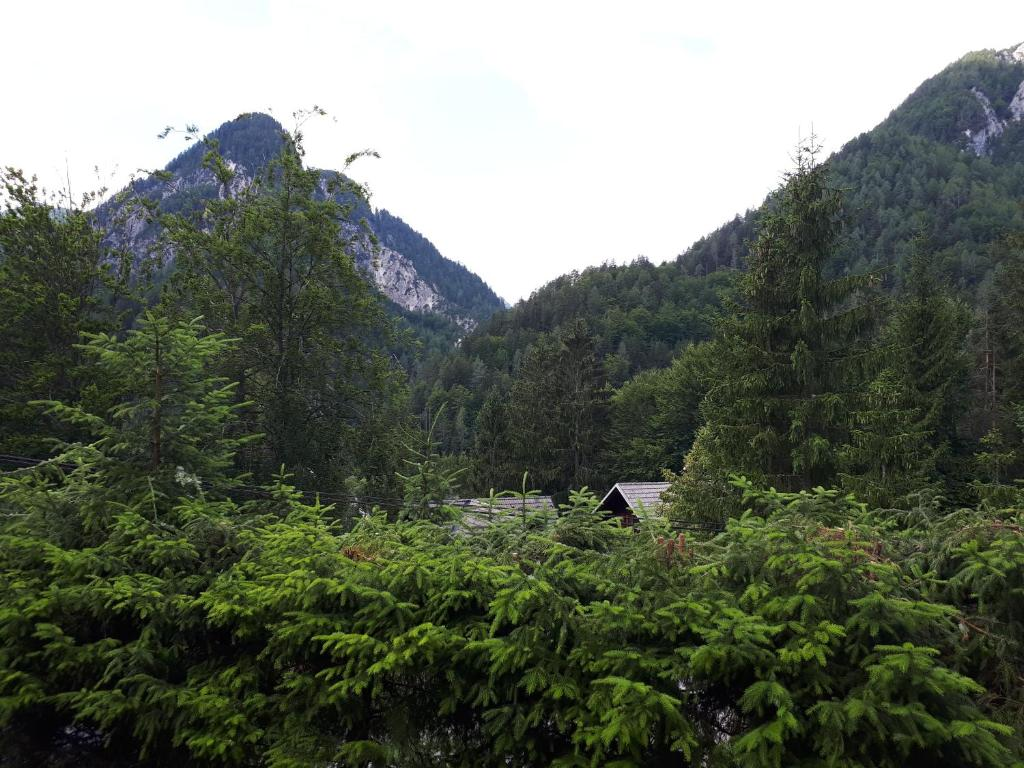 Peisaj natural din apropierea acestei case de vacanță