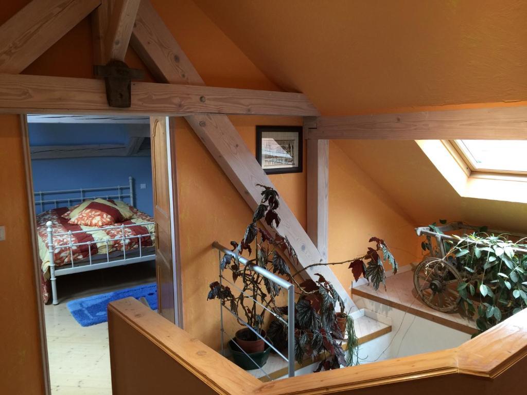 Apartments In Urmatt Alsace