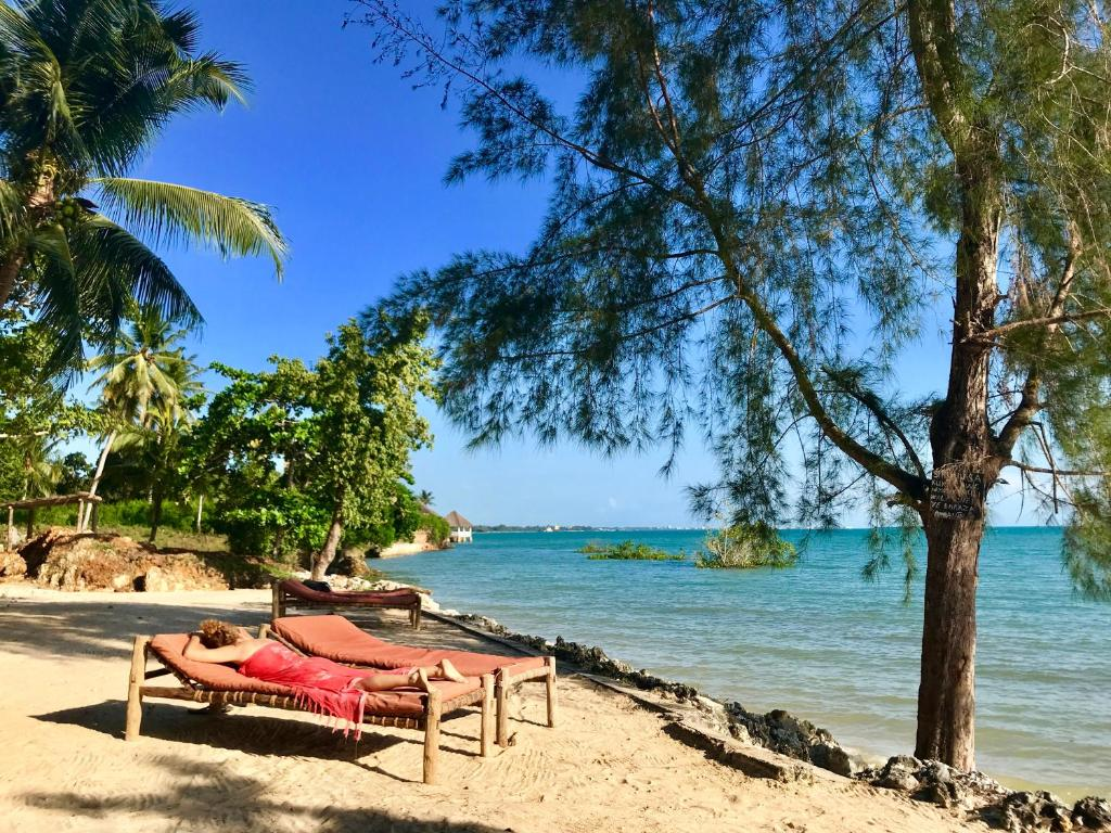 Mangrove Lodge Zanzibar City Tanzania Booking Com