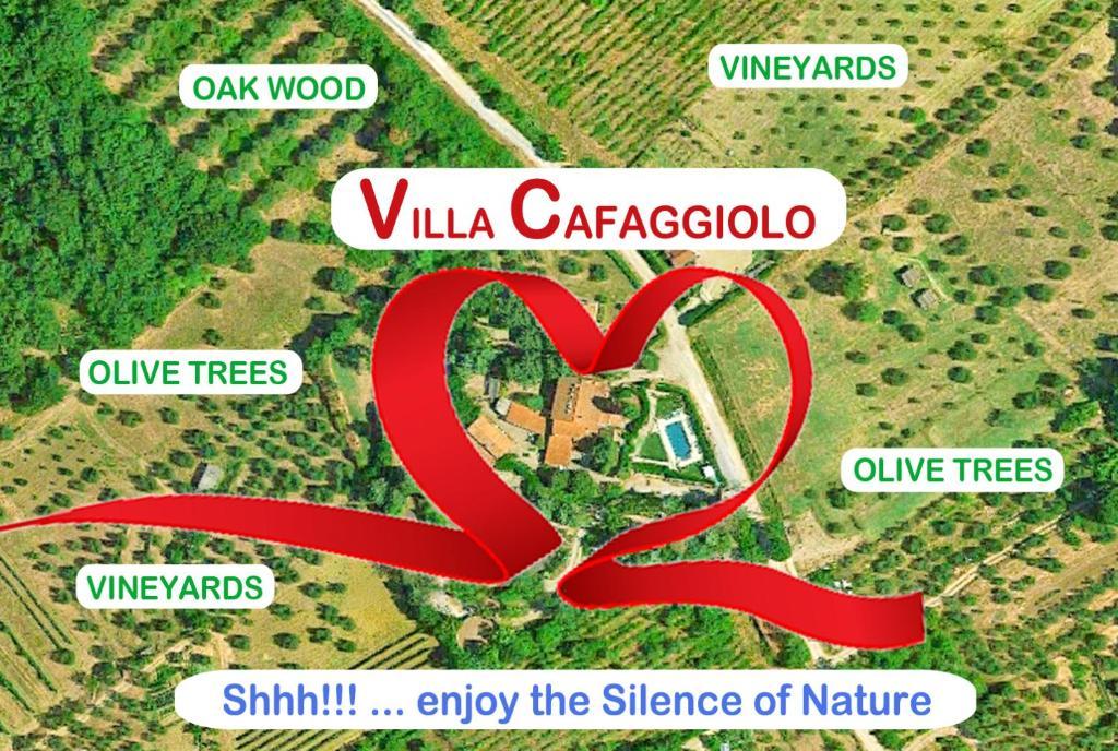 2324f0eed85 Villa Cafaggiolo apt GIOTTO (Italië Rosano) - Booking.com