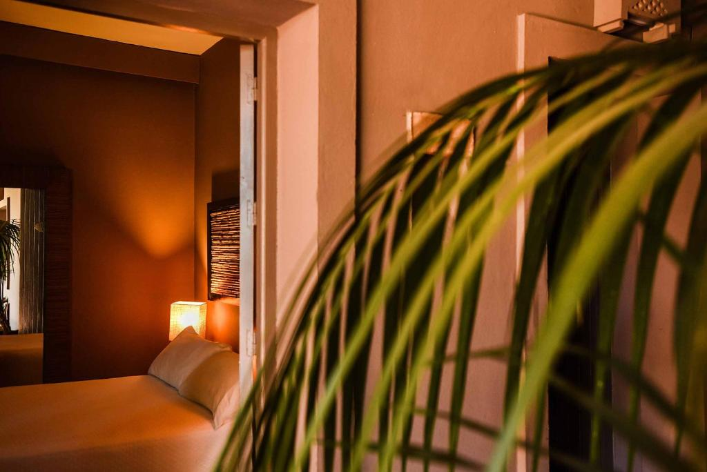 boutique hotels tarifa  31