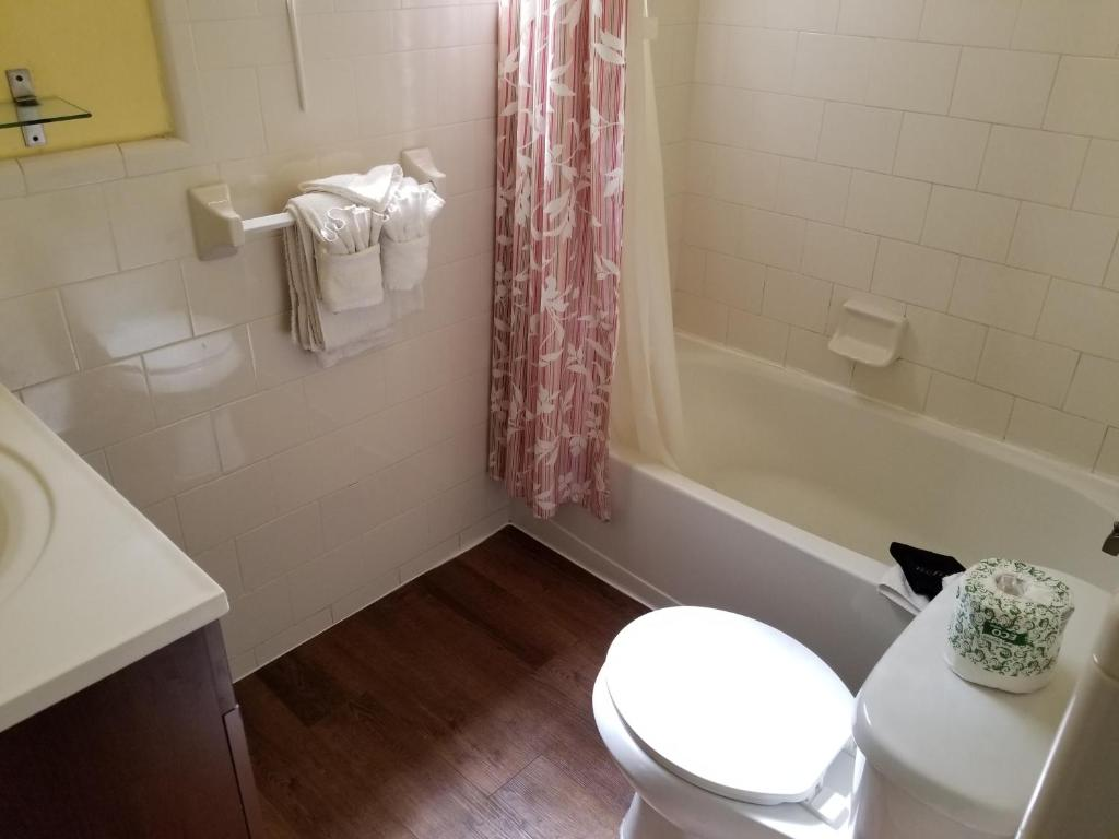 Resort Royal North Beach, Clearwater Beach, FL - Booking.com on royal bathroom curtains, royal closets designs, royal greek designs, royal living room, royal wall designs, royal wedding designs, royal master bathrooms, royal purple bathroom, royal furniture designs, royal dining designs, royal painting designs, royal sofa design, royal bedroom designs, royal kitchens, royal jewelry designs, royal remodeling, royal flush designs, royal blue bathroom, royal paint designs, royal banner designs,