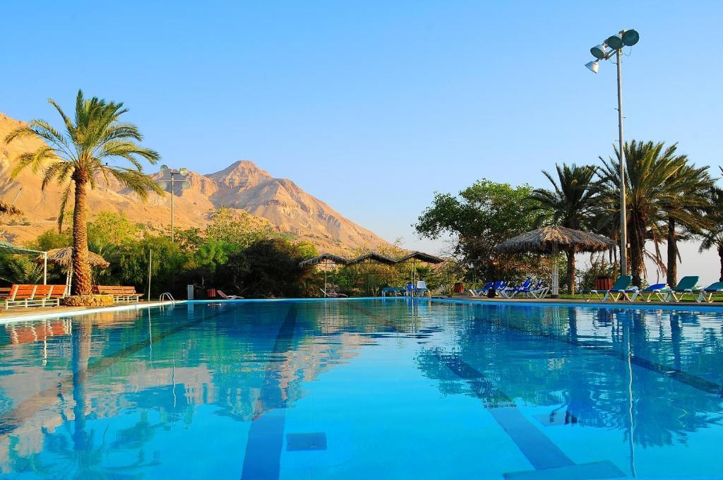 Der Swimmingpool an oder in der Nähe von Ein Gedi Family Apartment