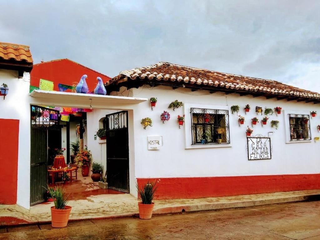SEX AGENCY in San Cristobal