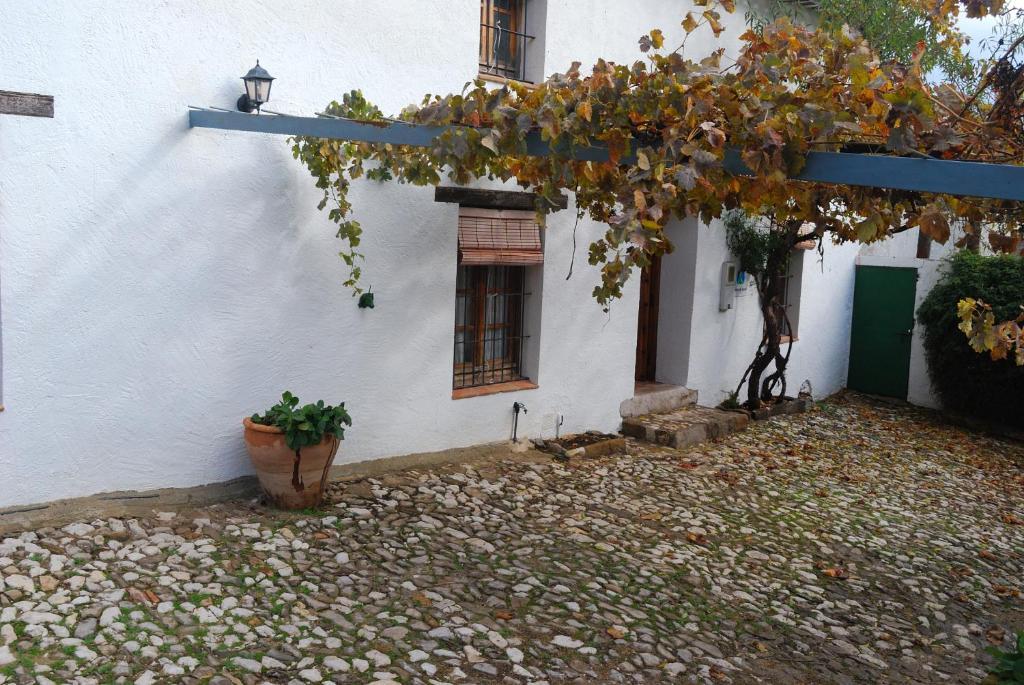 Casa Rural El Tinte, Grazalema, Spain - Booking.com