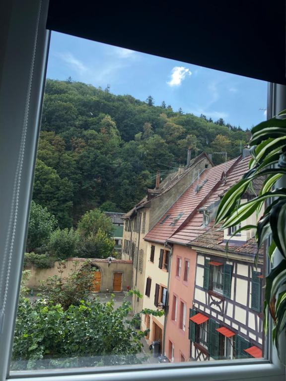 Apartments In Saint-amarin Alsace