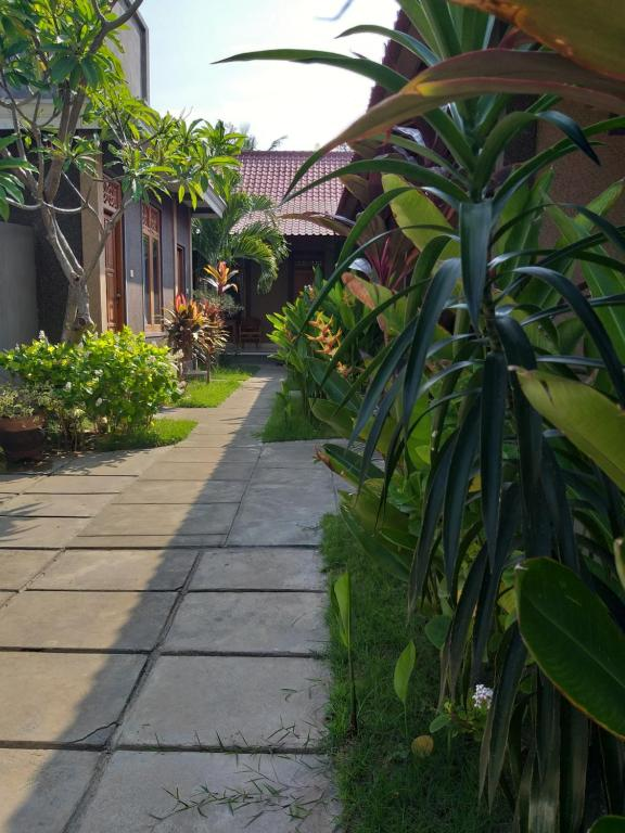 griya ayu homestay pemuteran pemuteran harga 2019 terbaru rh booking com
