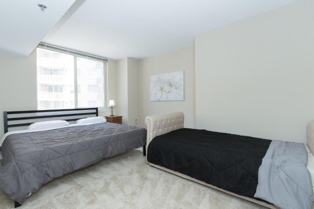 Apartment 40 Bedroom By Ballston Metro Arlington VA Booking Mesmerizing 2 Bedroom Apartments Arlington Va
