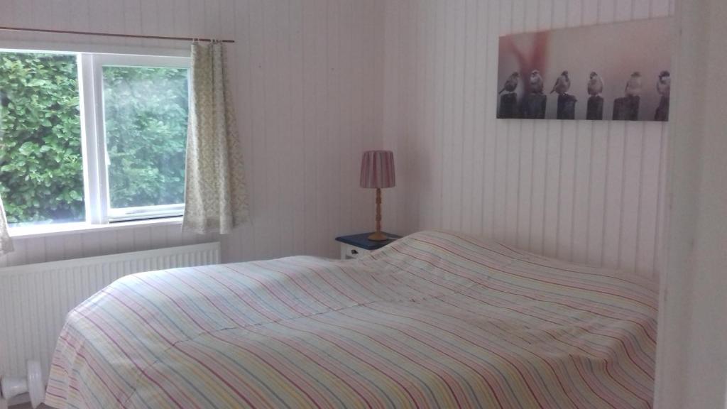 Finse Serene Woonkamer : Ferienhaus lytse roas kleine roos niederlande bakkeveen