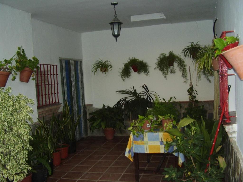 Casa Ignacio fotografía