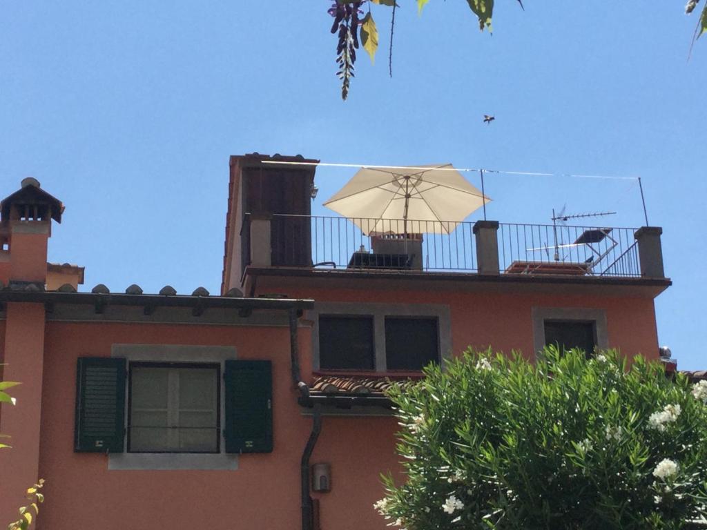 Gezellig Knus Dakterras : Wat kun je in de winter op je balkon of dakterras zetten groene