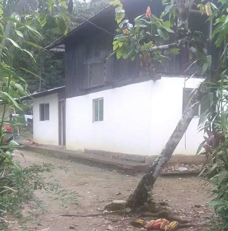 Holiday home Sacha Kawsana Wasi, Puerto Misahuallí, Ecuador ...