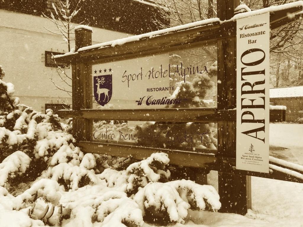 Sport Hotel Alpina зимой