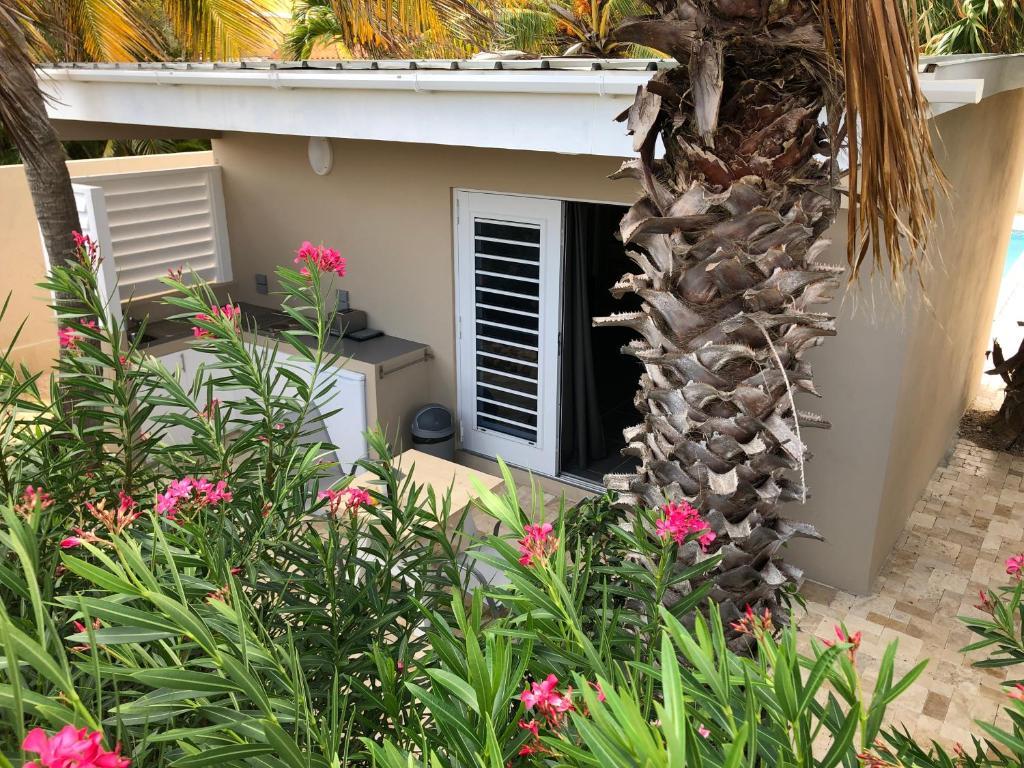 Sun Garden Tuinkussens.Apartment Casa Tulia Curacao Grote Berg Curacao Booking Com