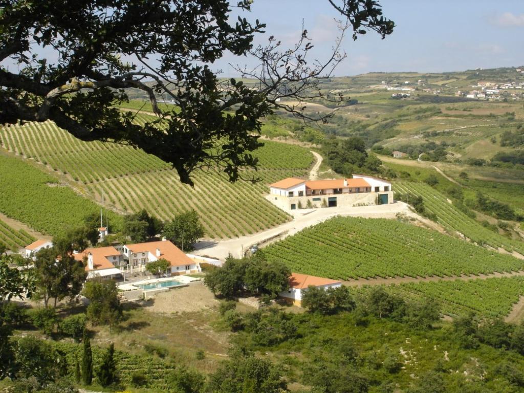 A bird's-eye view of Quinta da Murta Owner House