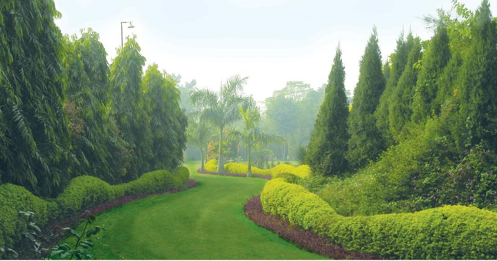 A garden outside Surjivan Resorts