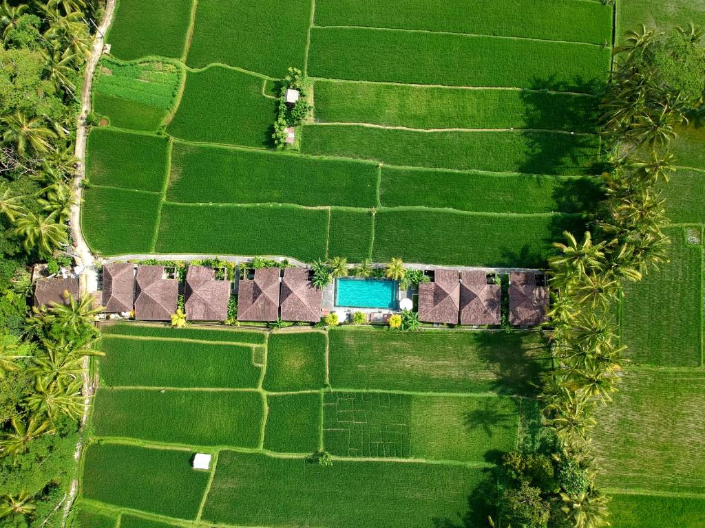 Pohľad z vtáčej perspektívy na ubytovanie Pajar House Ubud Suite & Villas