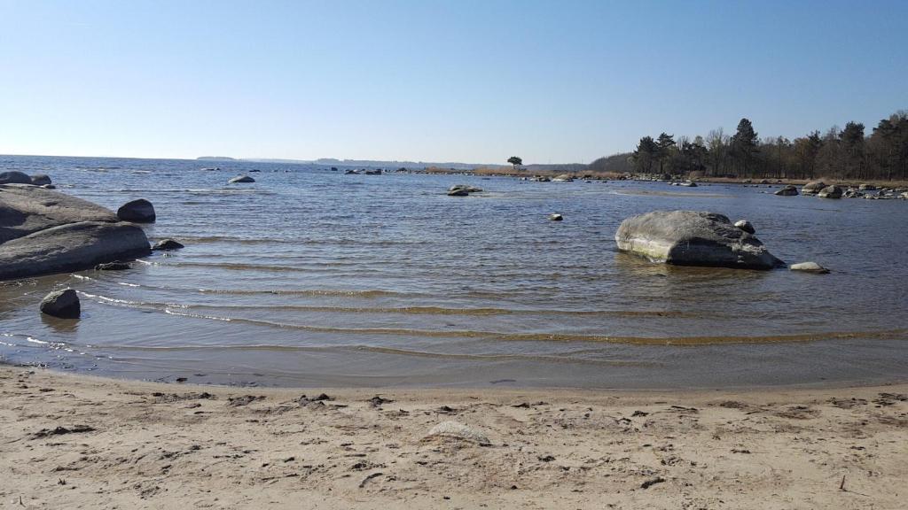 En strand vid eller i närheten av campingen