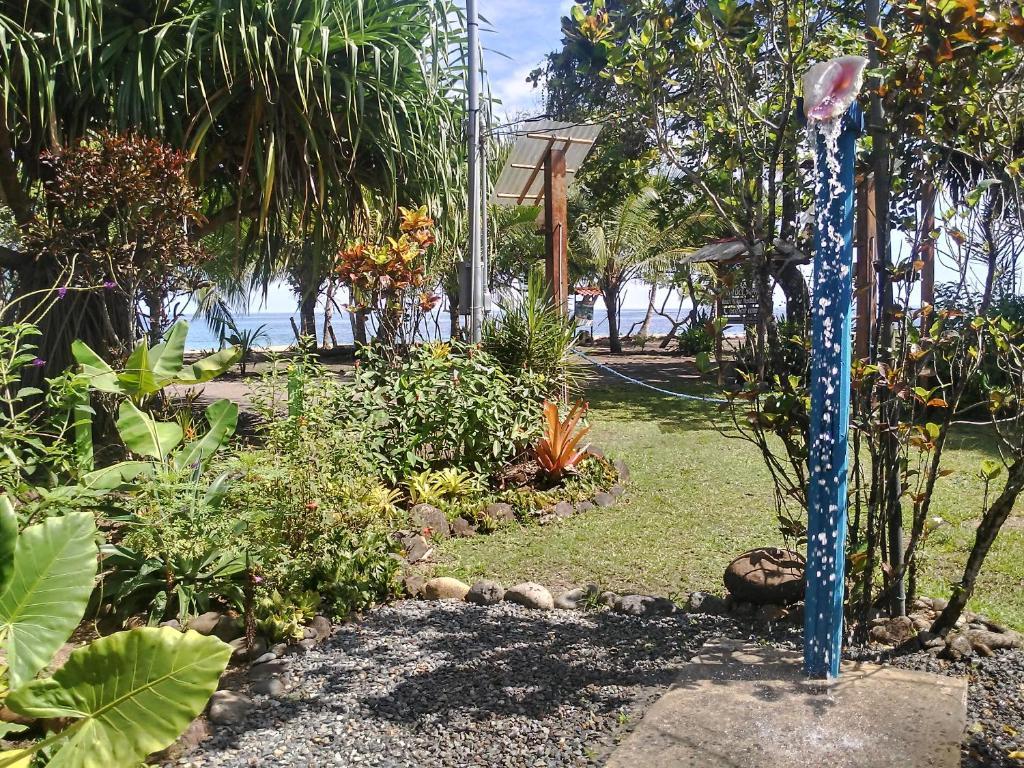 SEX AGENCY in Manzanillo
