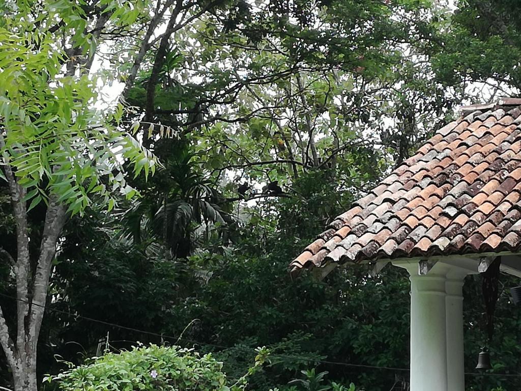 Inland Dutch Colonial Villa Galle Sri Lanka Booking Com