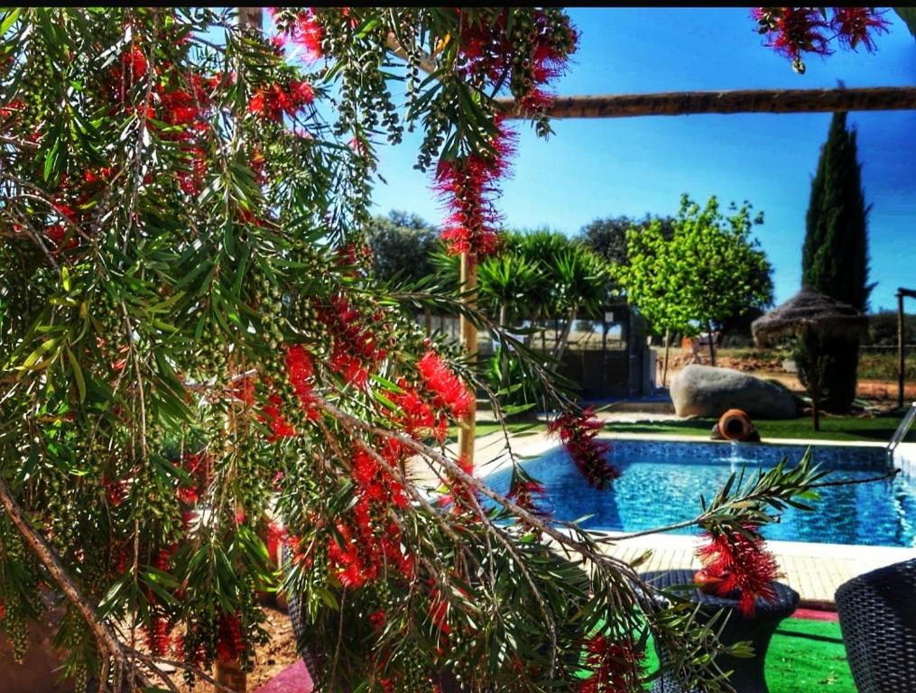 The swimming pool at or near Monte Santa Catarina