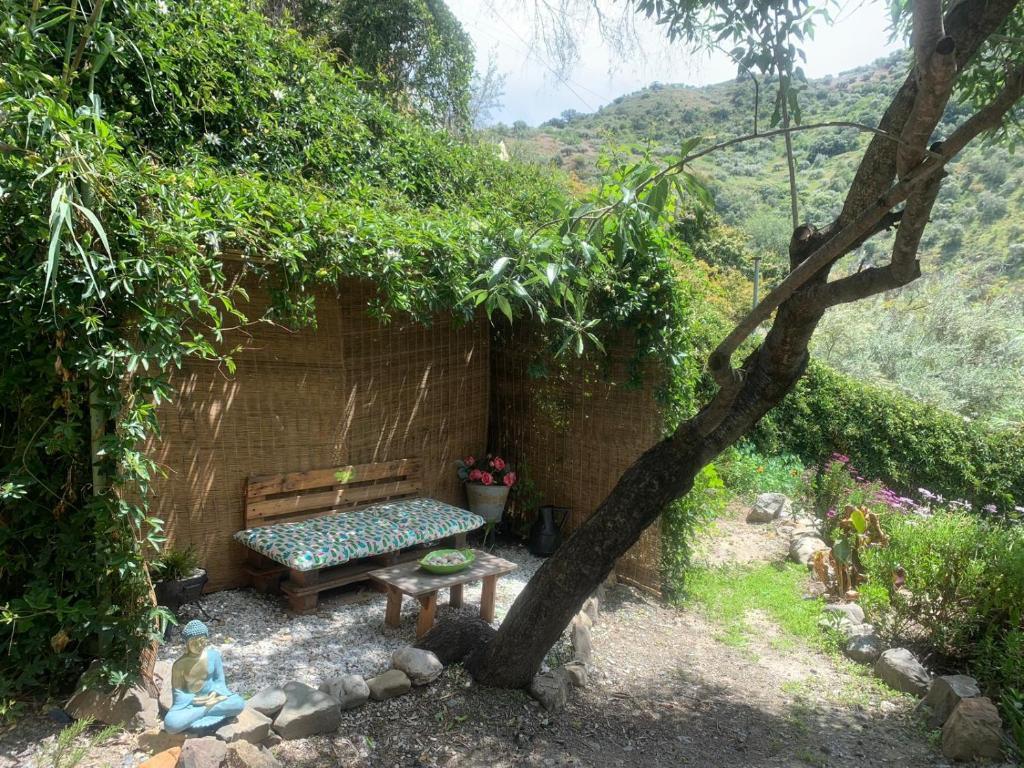 Casa de Férias Lemon grove farmhouse (Espanha Comares ...