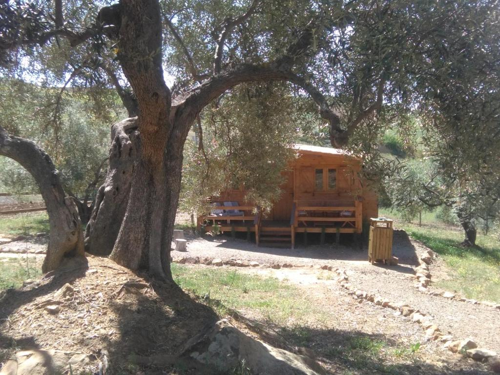 Casa de Campo RELENTE (Espanha Casabermeja) - Booking.com
