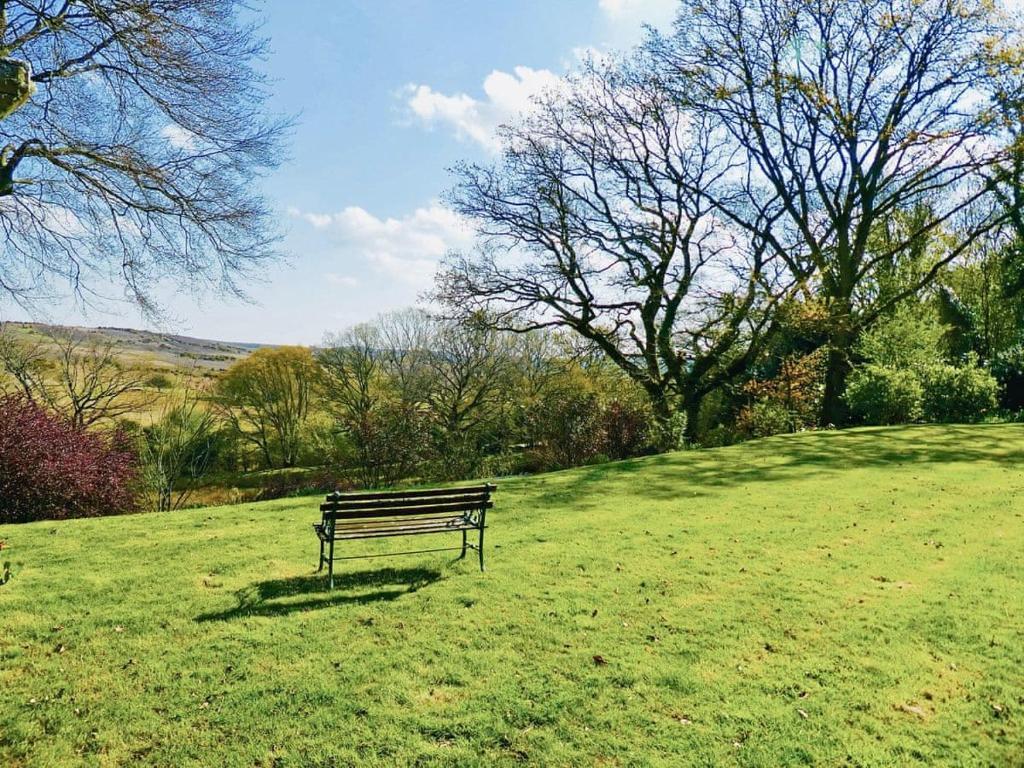 A garden outside Meadow Pipit