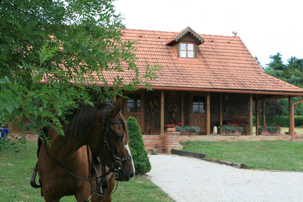 Apartment Old Oak House Country Retreat, Maruševec, Croatia