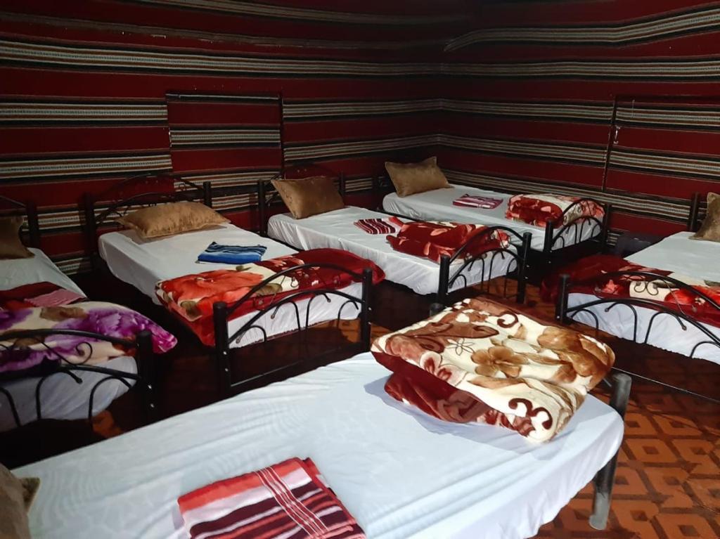 Cama o camas de una habitación en Bedouin Holidays Camp and Jeep Tours