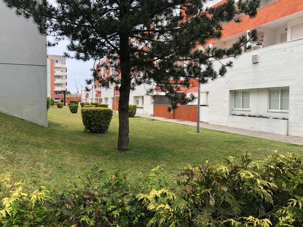 Apartamento Beach House (Portugal Viana do Castelo ...