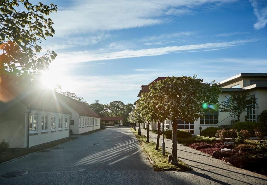 SEX ESCORT Silkeborg