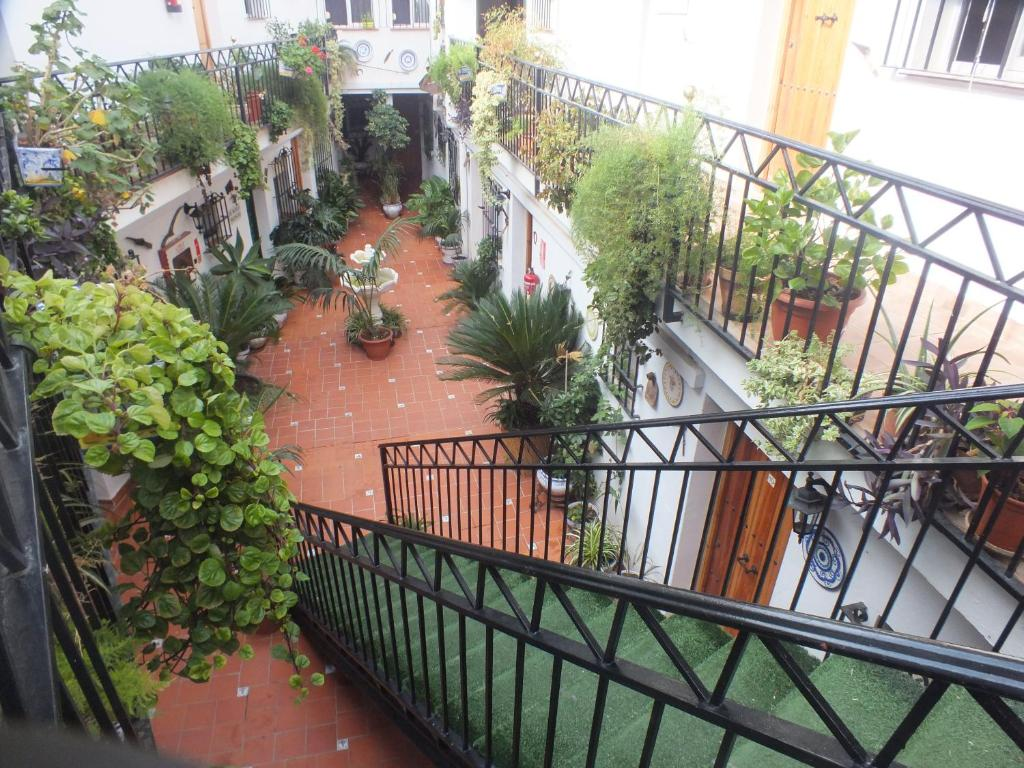 Wonderful Hostal El Patio, Alhaurín De La Torre (Spain) Deals
