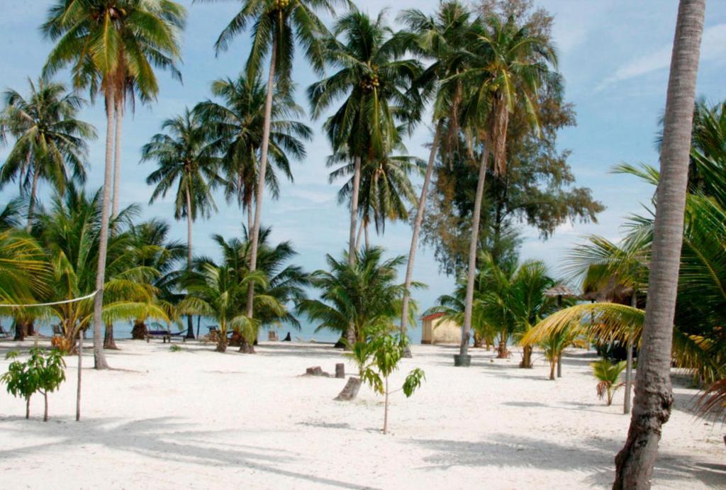 Palm Bungalow Part - 32: Booking.com