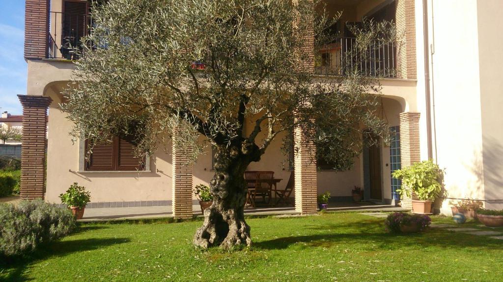 Matrimoni Bassano Romano : B b la rocca bassano romano italy booking