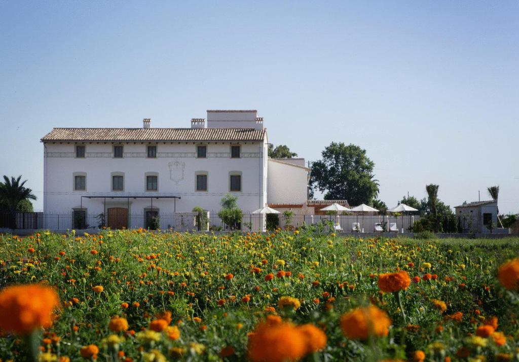boutique hotels in alboraya  1