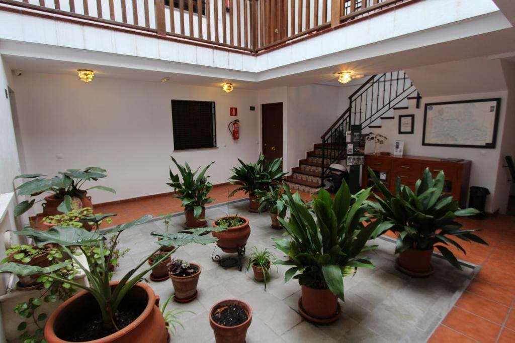 Foto del Apartamentos Abulaci