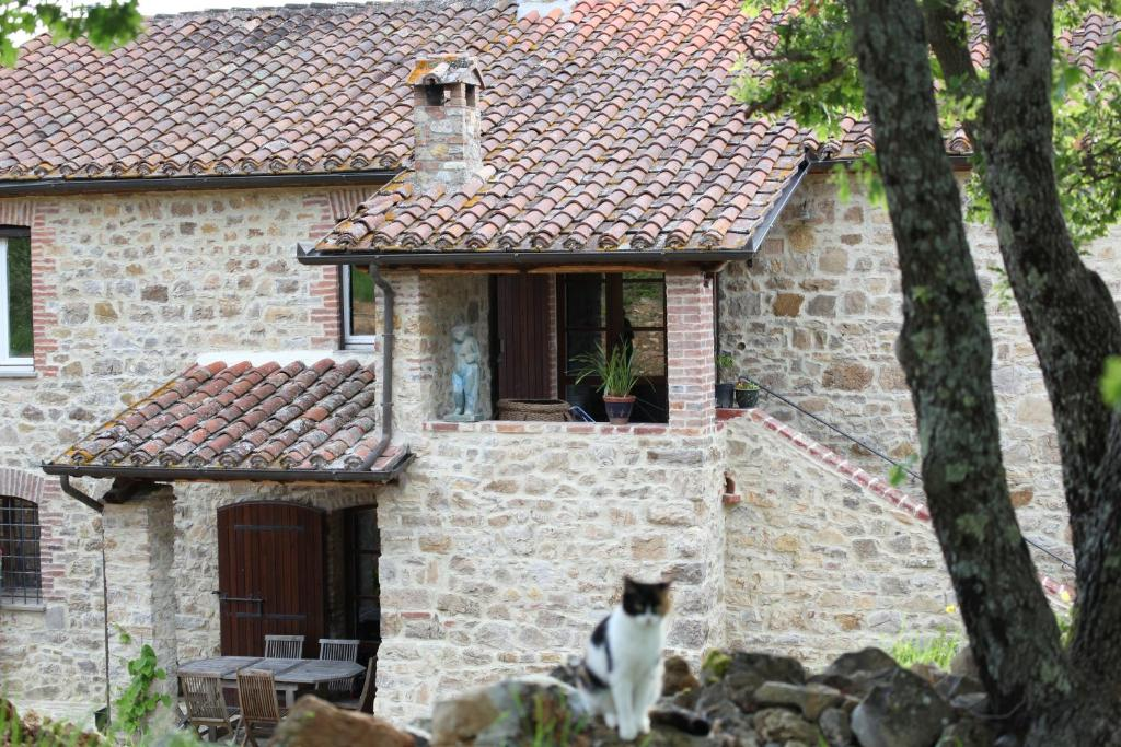 Pet or pets staying with guests at Podere del Buongustaio