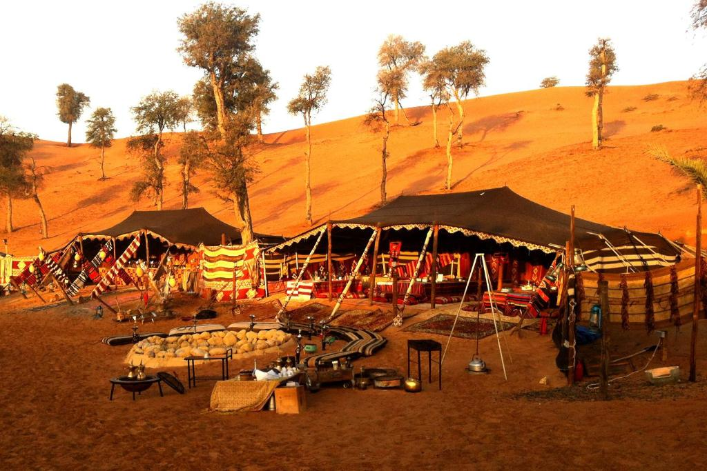 the pros and cons of desert camping
