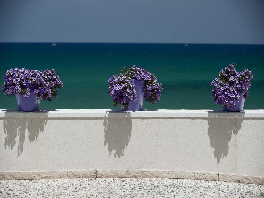 Apartment Terrazza sul Mare, Trappeto, Italy - Booking.com